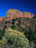 Canyons of Zion National Park Photographic Print by Frank Burek