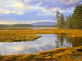 Bass Harbor Marsh and Western Mountain Photographic Print by George H.H. Huey