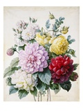 Bouquet of Dahlias and Roses Giclee Print by Camille de Chantereine