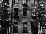 Trees and Windows, Manhattan, 1944 Photographic Print by Brett Weston