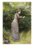 The Bird's Nest Giclee Print by Edward Killingworth Johnson