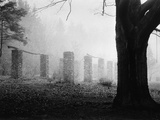 Stone Pillars in Clearing Photographic Print by Brian Cencula