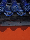 Roof Tiles in Forbidden City Photographic Print by Keren Su