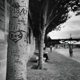 Graffiti on Tree Trunk Photographie par Ariel Ruiz I Altaba