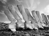 Whale Bones in Antarctica Photographic Print by Chris Rainier