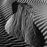 Sand Erosion by Brett Weston Photographic Print by Brett Weston