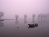 Mist Obsures Boat in The Rhine Photographic Print by Jim McDonald