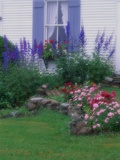 Blooming Cottage Flowers Photographic Print by Susan Rosenthal