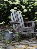 Keetz Garden Photographic Print by Susan C. Rosenthal