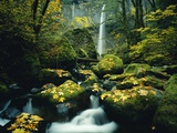 Stream and Waterfall in Autumn Photographic Print by Craig Tuttle