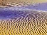 Purple Sand Dunes Photographic Print by  Owaki - Kulla