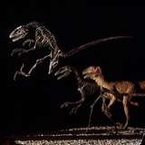 Skeleton and Model of Deinonychus Photographic Print by Louie Psihoyos