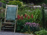 Old Chair in a Garden Photographic Print by Susan Rosenthal