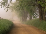 Fog Over Rural Road in Great Smoky Mountains Photographic Print by William Manning