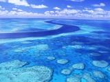 Australia's Great Barrier Reef Fotografisk tryk af Theo Allofs