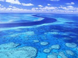 Australia's Great Barrier Reef Stampa fotografica di Theo Allofs