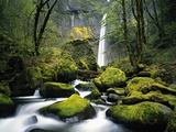 Stream Flowing over Mossy Rocks Photographic Print by Craig Tuttle