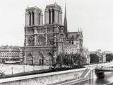 Cattedrale di Notre Dame Stampa fotografica di  Bettmann