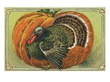Thanksgiving Greetings with a Turkey and Pumpkin Giclee Print