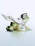 Thrill-seeking frog Photographic Print by Christopher C Collins