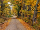 New England Road in Autumn Reproduction photographique par Darrell Gulin