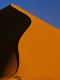 Tree and Sand Dune, Namib Desert Photographic Print by Darrell Gulin