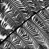 Fern Leaf Silhouette Photographic Print by Brett Weston