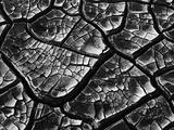 Dry Cracked Mud Photographic Print by Brett Weston