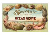 Souvenir from Ocean Grove, New Jersey Posters