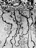 Stained Wallpaper Photographic Print by Brett Weston