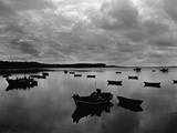 Fishing Boats in Harbor Photographic Print by Brett Weston