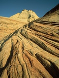 Cross-Bedded Sandstone in Zion National Park Photographic Print by Tom Bean
