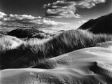 Dunes and Grasses, Oceano, 1957 Fotografie-Druck von Brett Weston