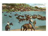 Cattle Round-Up, Montana Art