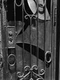 Door, New York, 1943 Photographic Print by Brett Weston