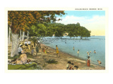 Avalon Beach, Monroe, Michigan Prints