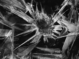 Ice Crystal, 1965 Photographic Print by Brett Weston