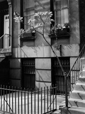 Brownstones by Brett Weston Photographic Print by Brett Weston