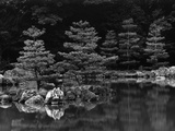 Pond and Pines Photographic Print by Brett Weston