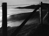 Fence and Hills, Big Sur, 1962 Fotografie-Druck von Brett Weston