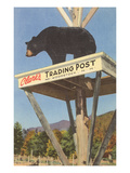 Ours, poste d'approvisionnement de Clark, Woodstock, New Hampshire Poster