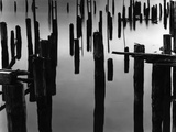 Piles in Fog, 1968 Photographic Print by Brett Weston
