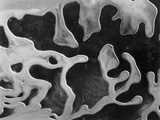 Liquid Abstraction, California, 1956 Fotografie-Druck von Brett Weston