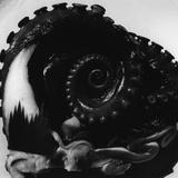 Octopus Tentacle Fotoprint van Brett Weston