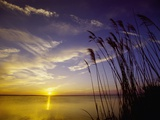 Sunset on the Barnegat Bay and Sea Oats Photographic Print by Bob Krist