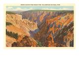 Grand Canyon, Yellowstone Park, Montana Poster