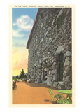 Grove Inn Park, Asheville, North Carolina Prints