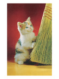 Kitten with Broom Posters