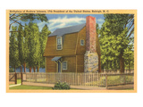 Andrew Johnson Birthplace, Raleigh, North Carolina Art