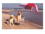 White Labradors at the Beach Prints